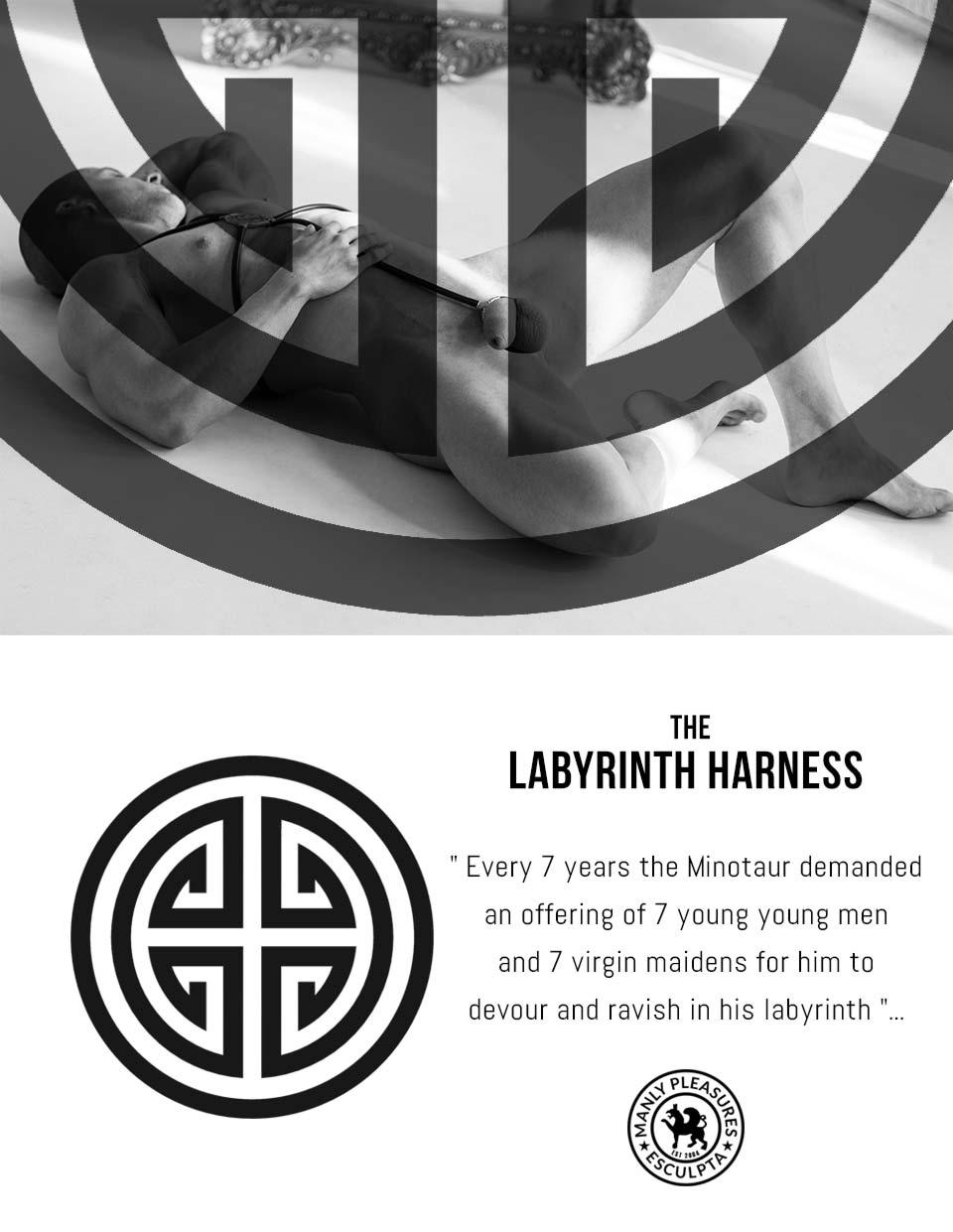 harness by esculpta