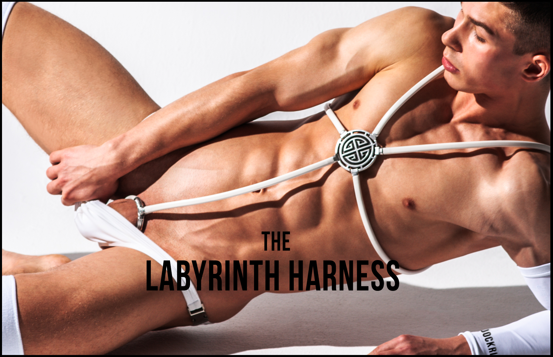 LAbyrhinth penis jewel and harness. Manly pleasures